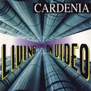 LIVING ON VIDEO (1993)