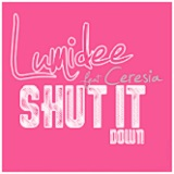 SHUT IT DOWN (RMX 2013)